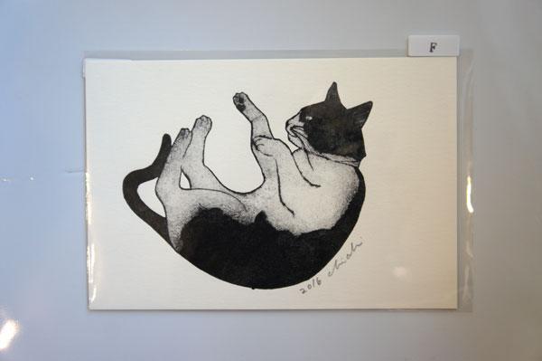 坂本千明「猫はがき」